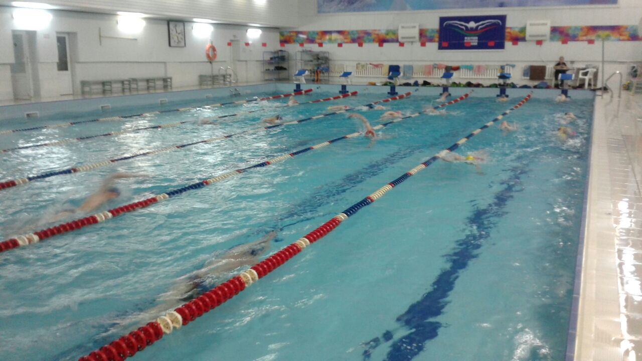 Подготовка пловцов